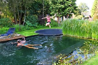 natural swimming pool that plants clean the water