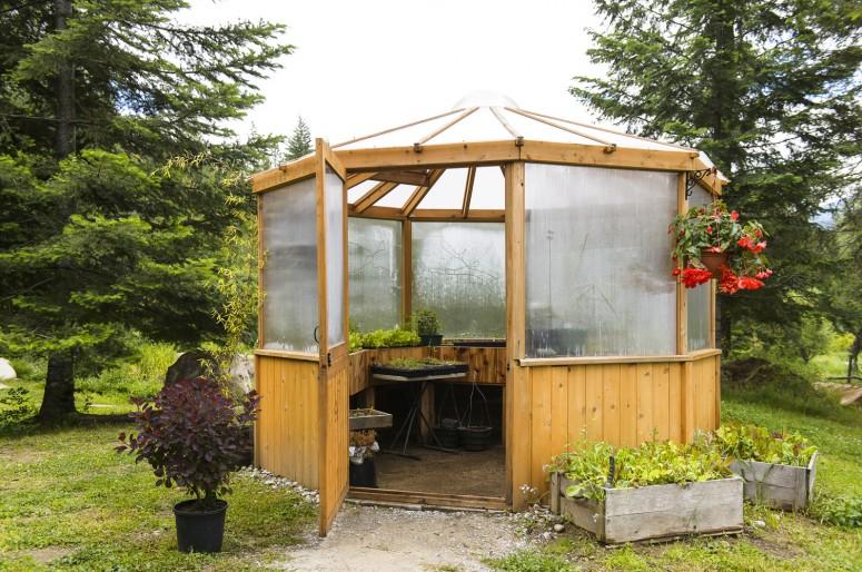 3_greenhouse